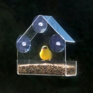 High Quality Custom Triangle Window Clear Acrylic Bird Feeder pictures & photos