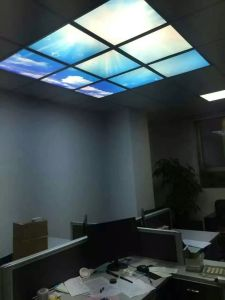 Decorative LED Light Scence Panel Light for Indoor Lighting pictures & photos