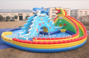 Inflatable Dragon Fish Water Slide with Pool for Water Park pictures & photos