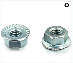 DIN 6923 Hex Flange Nut pictures & photos
