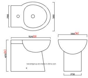 2016 New Design Ce Certification Ceramic Bidet B16001 pictures & photos