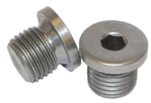 DIN908 Stainless Steel Hexagon Socket Screw Plug pictures & photos