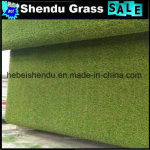 PE Monofilament Material 25mm Synthetic Turf China Grass pictures & photos