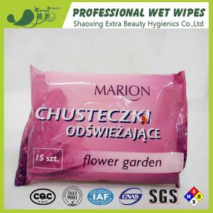 Sanitary Wet Tissues Aloe Vera Personal Care Wet Wipes pictures & photos