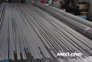 Tp316 Precision Seamless Stainless Steel Tube pictures & photos