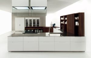 Wooden Kitchen Cabinets with New Designs pictures & photos