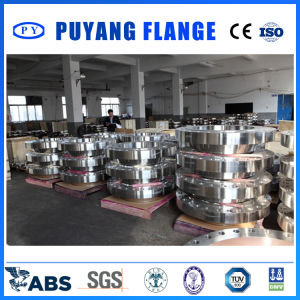 ASME B16.47 Ser. a Big-Size Forged Ss Weld Neck Flange pictures & photos