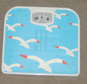 Cheap Manual Bathroom Scale pictures & photos