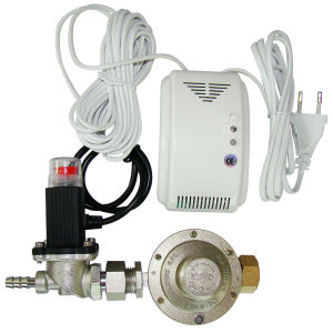Multi Gas Detector (AM-201V with DN20 valve)