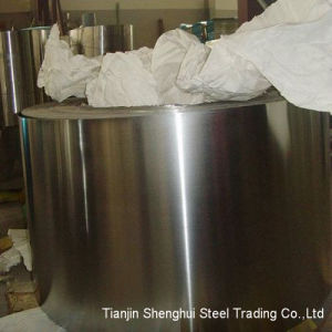 Premium Quality Stainless Steel Strips (201 Grade) pictures & photos