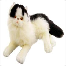 White Cat (ER149)