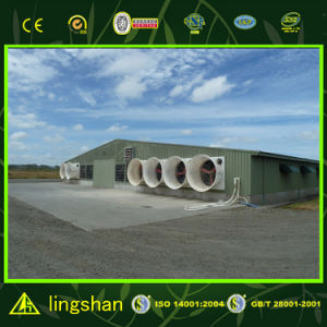 Low Cost Prefabricated Poultry House (L-S-C1-3) pictures & photos
