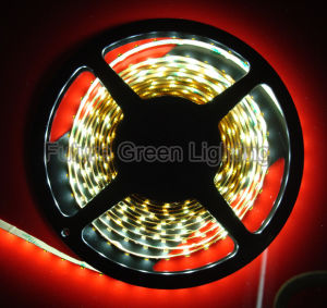 SMD5050/2835/5630/3528/5630 LED Strip Light pictures & photos