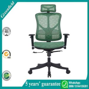 Korean Green Chair pictures & photos