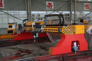 CNC Plasma Cutting Machine, CNC Oxy-Fuel Cutting Machine (CNCSG) pictures & photos