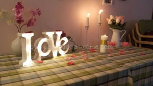 Decorative Holiday Marquee Light Christmas LED Letters pictures & photos