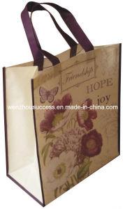 Non-Woven Bag Ss05 pictures & photos