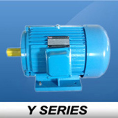 Y Series Quality Material Motor Electric (Y112M-6)