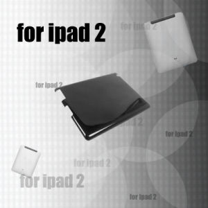 Carbon Fiber Case for iPad 2