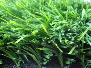 W-Type Grass