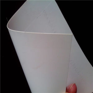 White/Colored 0.8mm PVC Sheet pictures & photos