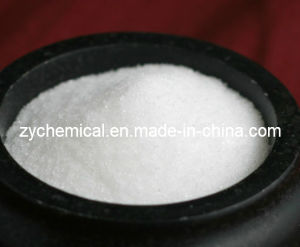 Citric Acid 99.5%, Monohydrate & Anhydrous, Bp98, Food Additive pictures & photos