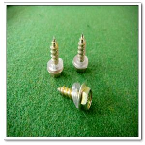 Roofing Screw (DIN7504k(4.8*20))