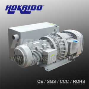 Vacuum Pump for Vacuum Laminated Machine (RH250)