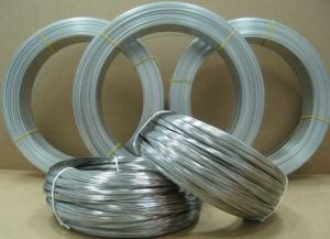 Anping Factory Galvanized Steel Oval Wire Low Price pictures & photos
