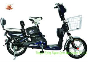 Popular Lead Acid E-Bikes (FP-EB-003) pictures & photos