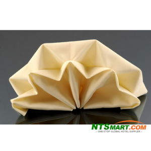 Dinner Napkin (N000022056) pictures & photos