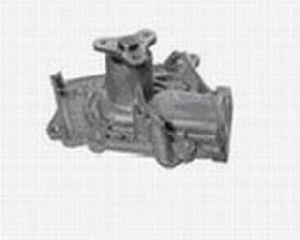 Water Pump (P-01)