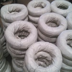 Electro Galvanized Steel Wire pictures & photos