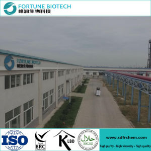 Sodium Carboxymethyl Cellulose CMC for Coated Paper pictures & photos