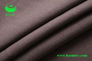 Linen Cotton Sofa Fabric (BS6024) pictures & photos