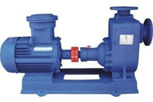 Cyz Series Marine Centrifugal Oil Transfer Pump pictures & photos