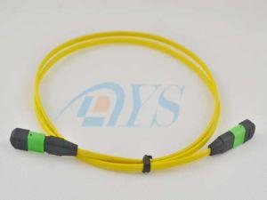 12 Singlemode Fiber MTP Optical Jumper pictures & photos