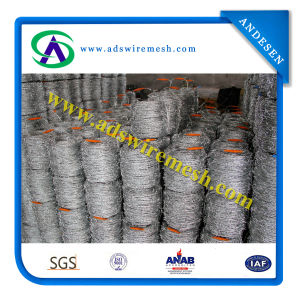 Barbed Wire (Galvanized and PVC Coated) pictures & photos