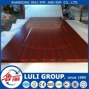 Door Skin From Luli Group pictures & photos