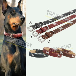 PU Dog Collar, Dog Training Collar (YL73302) pictures & photos