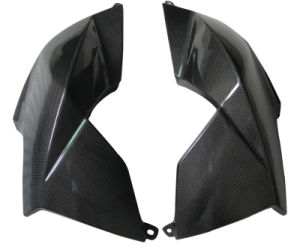 Carbon Fiber Aprilia Side Panel pictures & photos