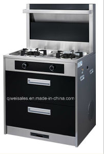 Integrated Cooker with Double Gas Stove (QW-1276) pictures & photos