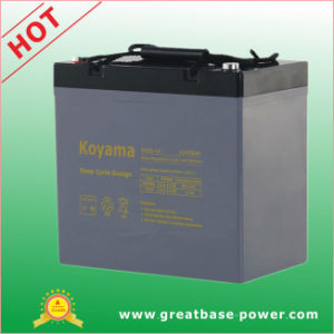 High Performance Deep Cycle Electric Wheel Chair Battery 55ah 12V pictures & photos