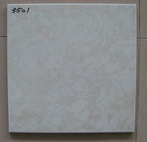 300X300mm Ceramic Floor Tiles (T341) pictures & photos