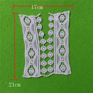 Sofe Cetting Cotton Eyelet Appliques Lace Collar (cn109) pictures & photos