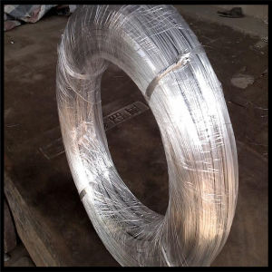 Low Carbon Electro Galvanized Wire pictures & photos