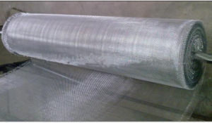 Hot-Dipped Galvanized Iron Woven Mesh in Good Quality pictures & photos