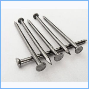 Lowst Price Common Wire Nails Supplier pictures & photos