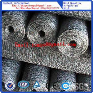 Hexagonal Wire Mesh PVC and Galvanized pictures & photos