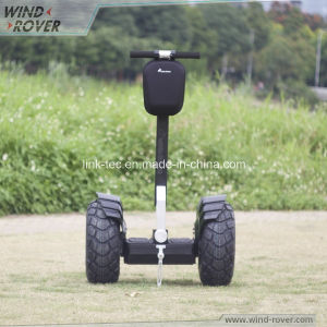 Wind Rover V6+ Low Chassis New Balance China Electric Chariot pictures & photos